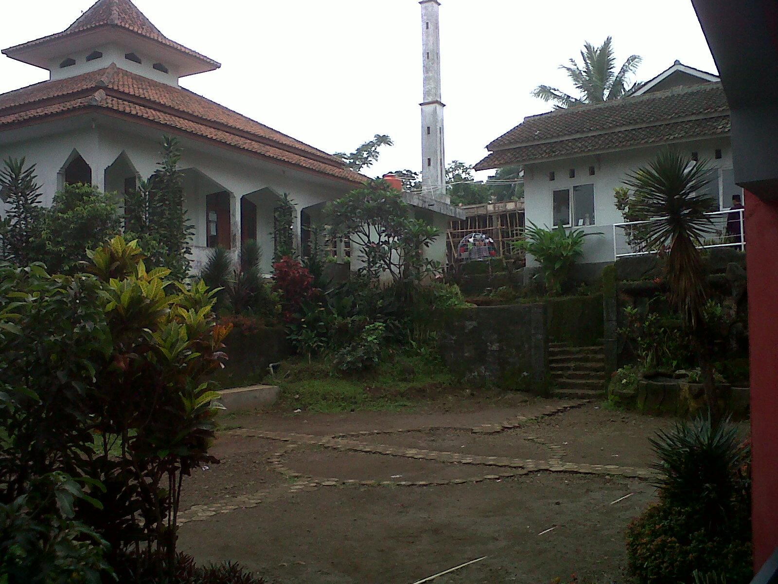 Img01416-20121214-0928